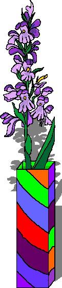 orchidee-bewegende-animatie-0006