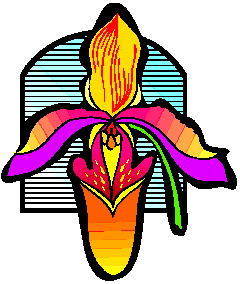 orchidee-bewegende-animatie-0009
