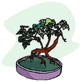 bonsai-boom-bewegende-animatie-0024