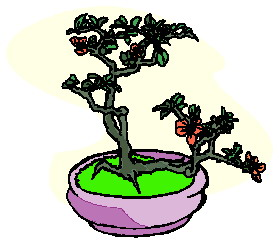 bonsai-boom-bewegende-animatie-0026