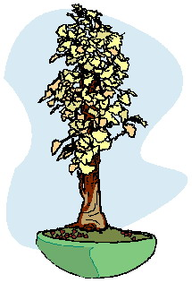 bonsai-boom-bewegende-animatie-0028