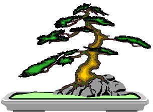 bonsai-boom-bewegende-animatie-0029