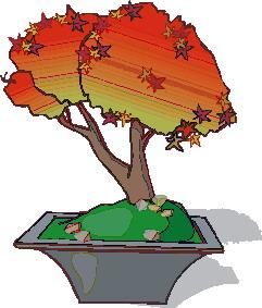 bonsai-boom-bewegende-animatie-0033