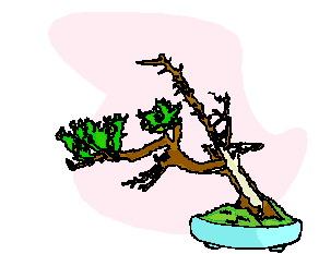 bonsai-boom-bewegende-animatie-0034