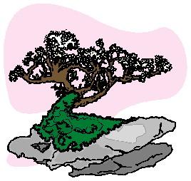 bonsai-boom-bewegende-animatie-0036