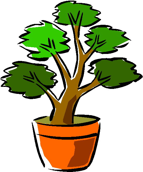 bonsai-boom-bewegende-animatie-0037