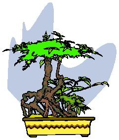 bonsai-boom-bewegende-animatie-0039