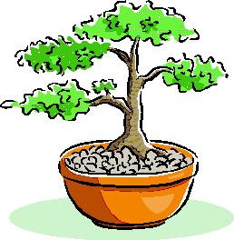 bonsai-boom-bewegende-animatie-0040