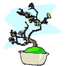 bonsai-boom-bewegende-animatie-0047