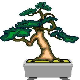 bonsai-boom-bewegende-animatie-0048