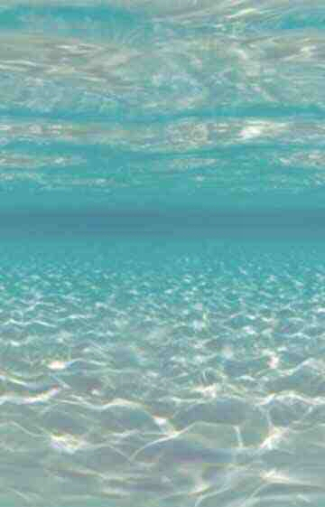 duiker-bewegende-animatie-0016