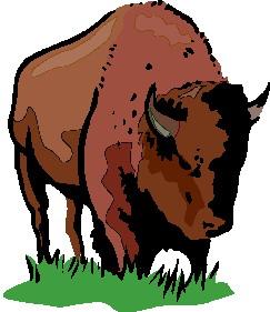 buffel-bewegende-animatie-0005