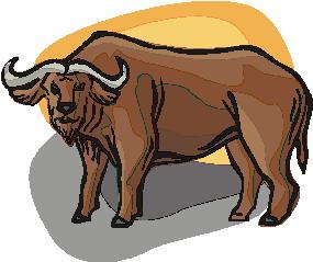 buffel-bewegende-animatie-0008