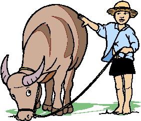 buffel-bewegende-animatie-0009