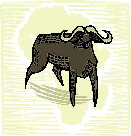 buffel-bewegende-animatie-0010