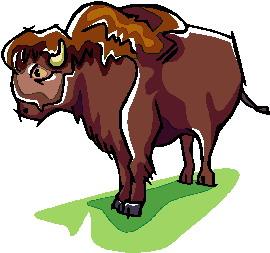 buffel-bewegende-animatie-0013