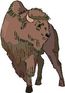 buffel-bewegende-animatie-0015