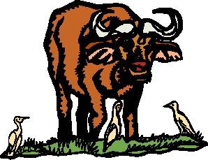 buffel-bewegende-animatie-0018