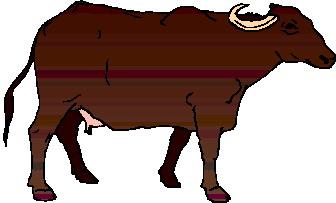 buffel-bewegende-animatie-0020