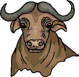 buffel-bewegende-animatie-0031