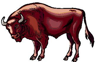 buffel-bewegende-animatie-0057