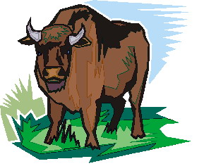 buffel-bewegende-animatie-0059