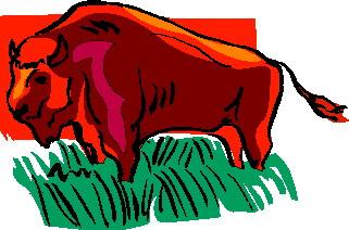 buffel-bewegende-animatie-0066