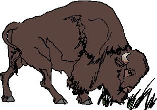 buffel-bewegende-animatie-0071