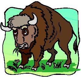 buffel-bewegende-animatie-0072