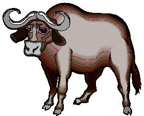 buffel-bewegende-animatie-0077