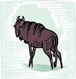 buffel-bewegende-animatie-0080