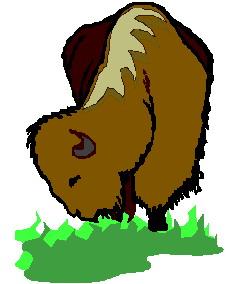 buffel-bewegende-animatie-0084