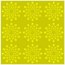 illusie-bewegende-animatie-0097