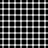 illusie-bewegende-animatie-0106