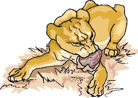 leeuw-bewegende-animatie-0088
