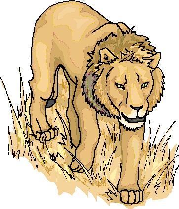 leeuw-bewegende-animatie-0099
