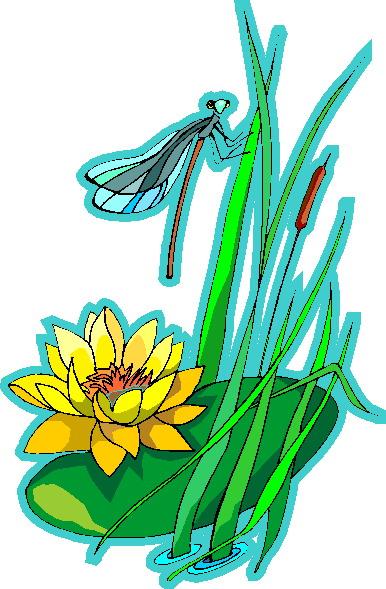 waterlelie-bewegende-animatie-0004