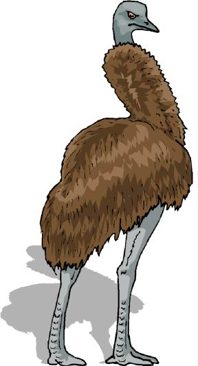 struisvogel-bewegende-animatie-0049