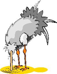 struisvogel-bewegende-animatie-0054