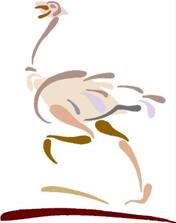 struisvogel-bewegende-animatie-0067