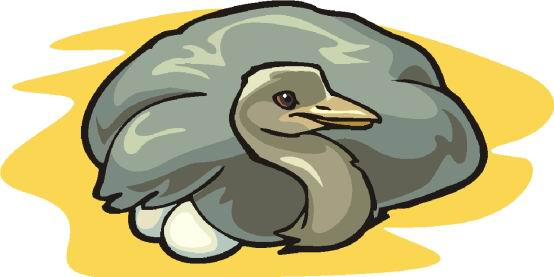 struisvogel-bewegende-animatie-0076