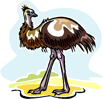 struisvogel-bewegende-animatie-0080