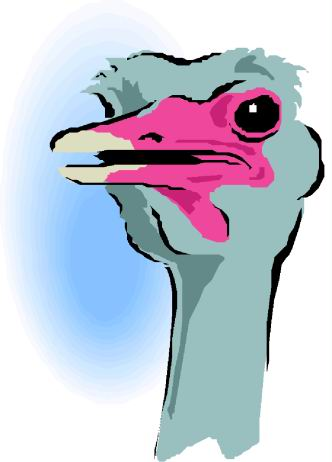 struisvogel-bewegende-animatie-0088