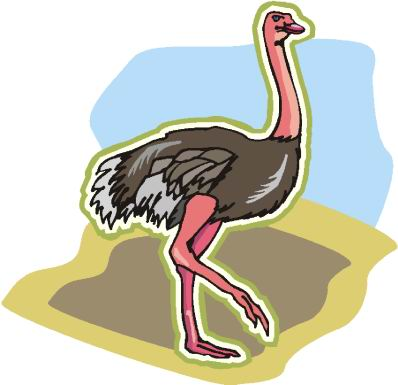 struisvogel-bewegende-animatie-0093