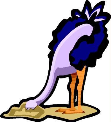 struisvogel-bewegende-animatie-0109