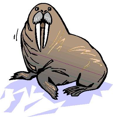 walrus-bewegende-animatie-0011