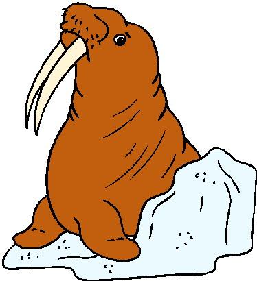 walrus-bewegende-animatie-0012