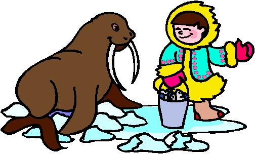 walrus-bewegende-animatie-0017
