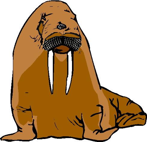 walrus-bewegende-animatie-0019