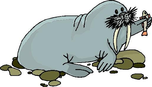walrus-bewegende-animatie-0026